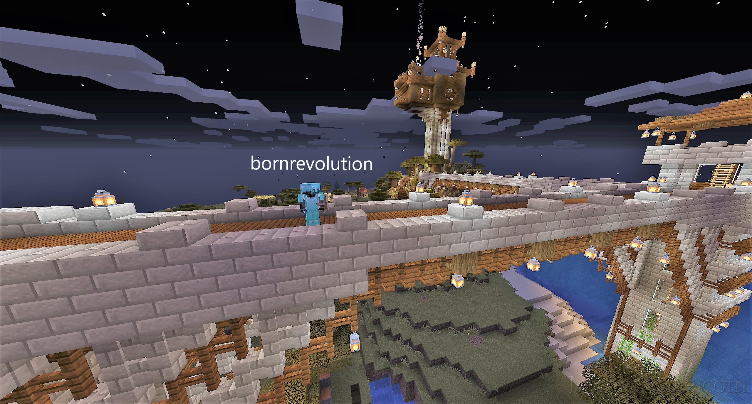 bornrevolution